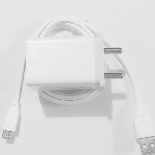 Original Oppo R1c Charger